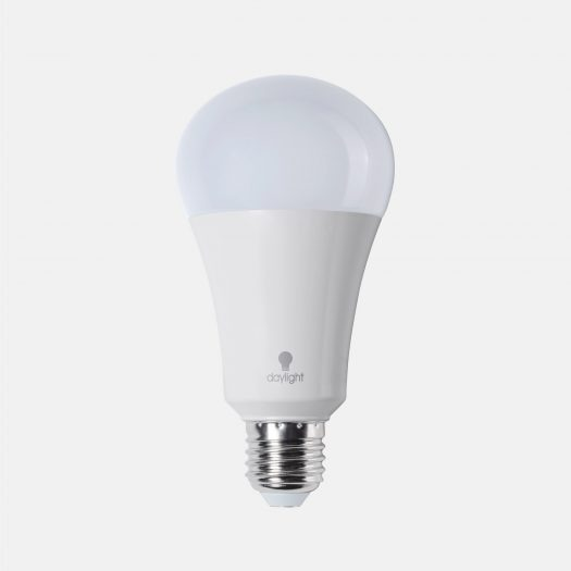 15W daylight LED Bulb (ES)