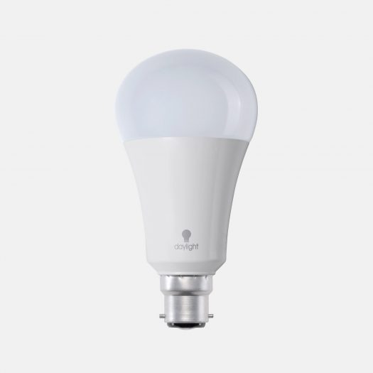 15W daylight LED Bulb (BC)